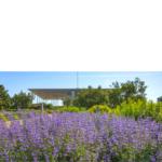 Με δωρεάν προκρατήσεις οι επισκέψεις στο Πάρκο Σταύρος Νιάρχος – Ελεύθερη πρόσβαση σε 65+, ΑμεΑ και εγκύους