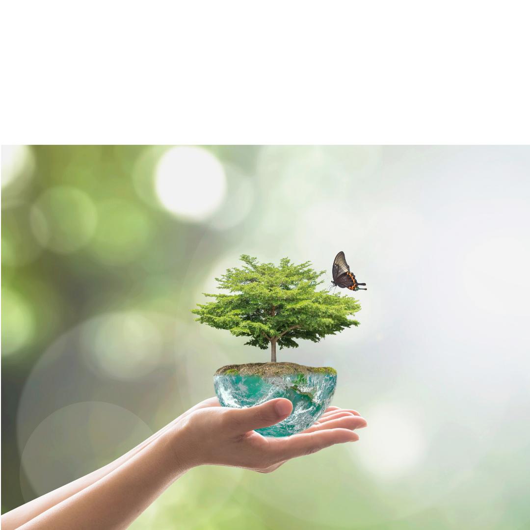 Παγκόσμια Ημέρα Περιβάλλοντος,               5 Ιουνίου