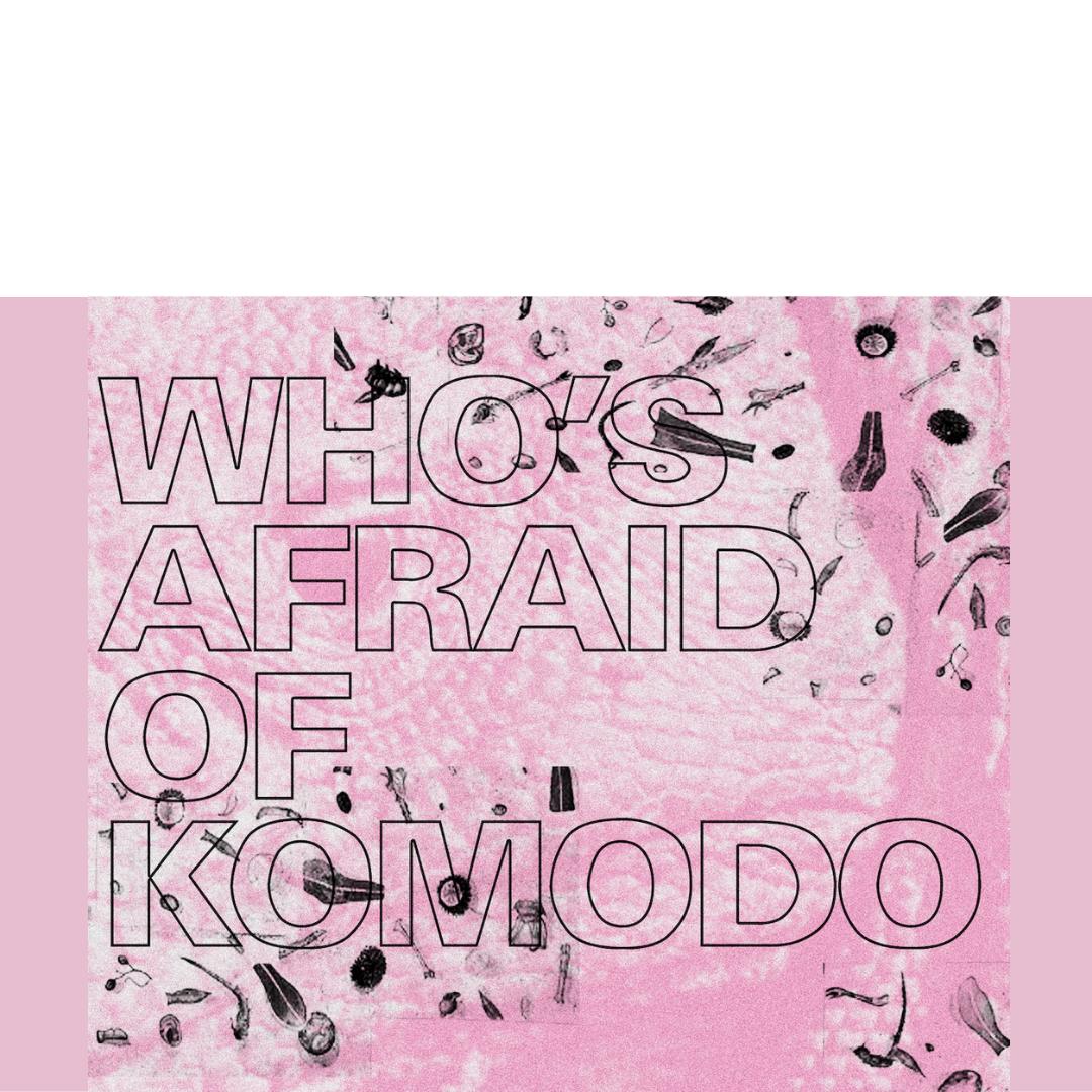 """Ομαδική έκθεση """"Who's Afraid of Komodo"""" στην Allouche Benias Gallery στην Αθήνα"""