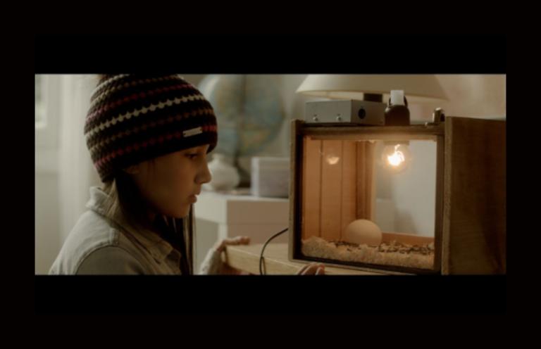 Kids Love Cinema: «Διαβατάρικα πουλιά»
